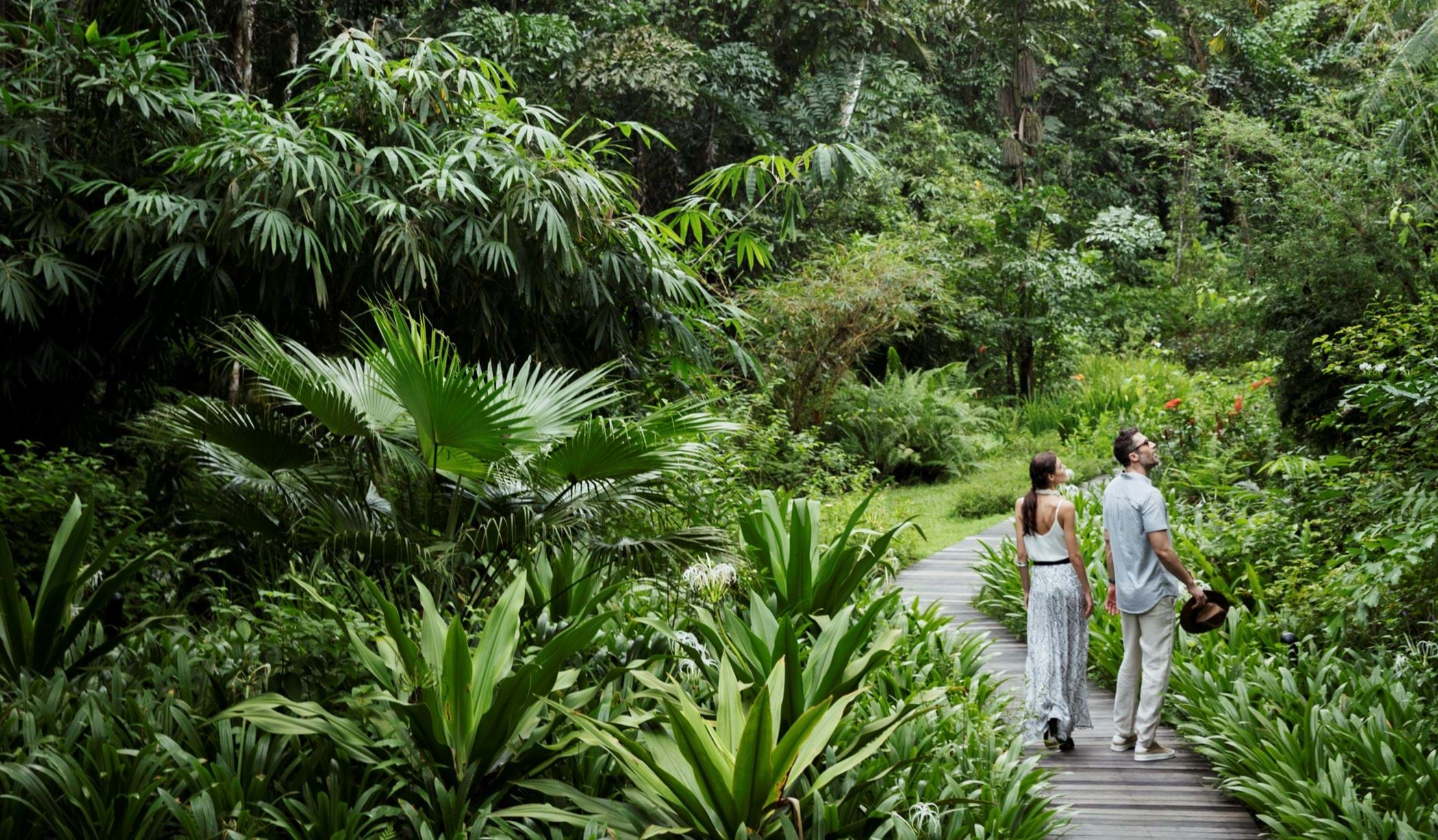 The Datai Langkawi - The Butterfly Walk with talents